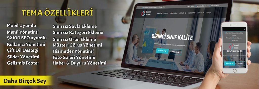 Çanakkale web tasarım tema özellikleri
